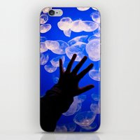 life aquatic iPhone & iPod Skins featuring Life Aquatic by Michelle Fay