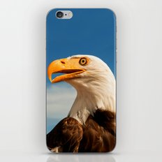 EAGLE EYED iPhone & iPod Skin