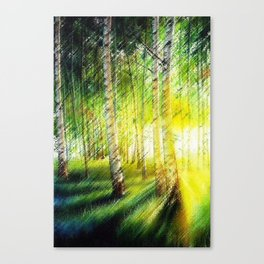 White Birch Forest at Sunset Landscape Painting Canvas Print