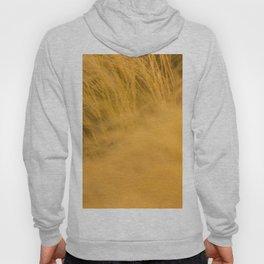 Amber Waves of grain Hoody