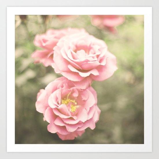 Haze Roses (Retro and Vintage Flower Photography) Art Print