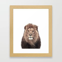 Lion Print, Safari Animal, Nursery Decor Framed Art Print