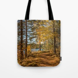 Beautiful path in the forest by a river in autumn mood Tote Bag