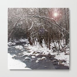 Winter Creek Metal Print