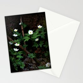 Anemone Nemorosa Stationery Cards