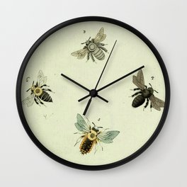 Bee Species Wall Clock