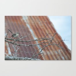 Cold Winter's Day Canvas Print