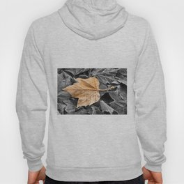 Frosty Leaves Hoody