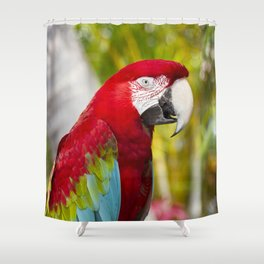 Green Winged Macaw Ara chloropterus Lahaina Maui Hawaii Shower Curtain