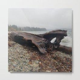 West Coast Driftwood Metal Print