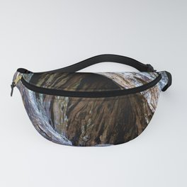 Old Olive Tree wood Fanny Pack