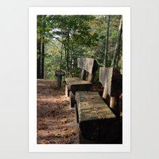 Maine Trail Bench Art Print