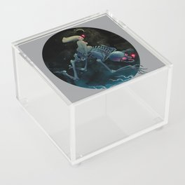 Midnight Traveler Acrylic Box