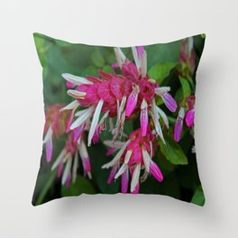 Transitioning Inspiration Throw Pillow