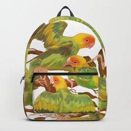 The extinction of the Carolina Parakeet. Backpack