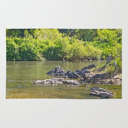 Beautiful rocks in the tranquil river Rug