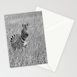 Zebra in high grass Stationery Cards