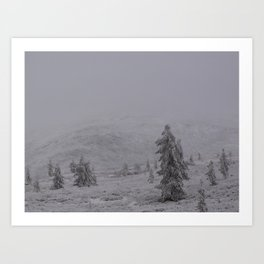 Border Land Art Print