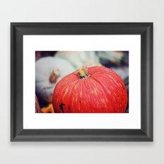 Red Cinderella Pumpkin Framed Art Print