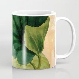 Muskmelon, Vintage Botanical Illustration Collage Art Coffee Mug