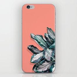 Skyward Plant iPhone Skin