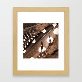 Beautiful Feathers On A Dark Brown Background #decor #buyart #society6 Framed Art Print