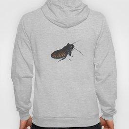 Madagascar Hissing Cockroach Hoody