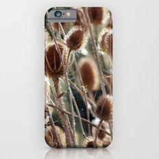 Thistles Slim Case iPhone 6s