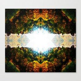 Through Natures Light Canvas Print