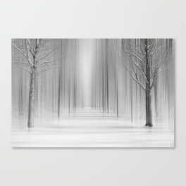 Winter 12 Canvas Print