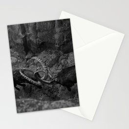 Young Bucks Stationery Cards