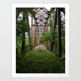 Abandoned Train Bridge Art Print