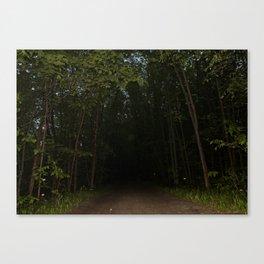 Unexplored Territory Canvas Print