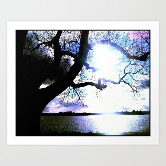 - Lake View -  Art Print