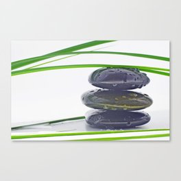Waterdrops on Hot Stones Canvas Print