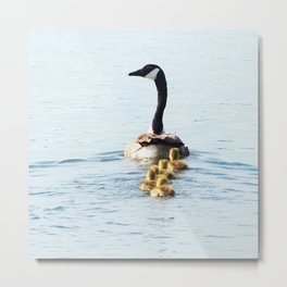 Mamma Goose and her Goslings Metal Print
