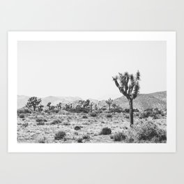 Joshua Tree Monochrome, No. 1 Art Print