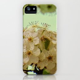 Spring Flowers on mint green background A377 iPhone Case