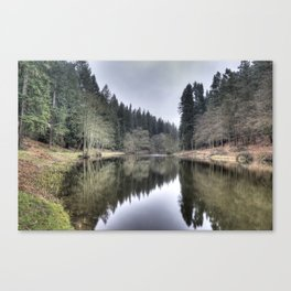 Soudley Ponds Canvas Print