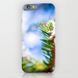 Bitter Cold, Hoarfrost On The Green Fir Tree iPhone Case