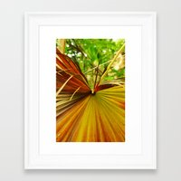 plant Framed Art Prints featuring Plant by Rebecca Brianne