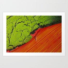 Macro Artwork Art Print