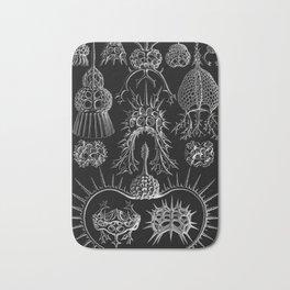 Ernst Haeckel - Spyroidea Bath Mat