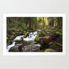 Paradise Creek IV Art Print