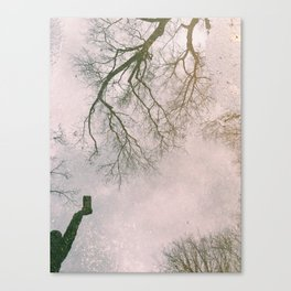 Reflective Reflection Canvas Print