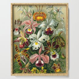 Victorian Orchids Floral Print-Ernst Haeckel Serving Tray