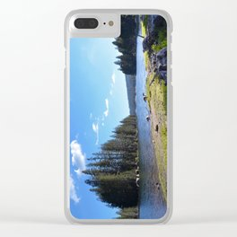 geese at lake alpine Clear iPhone Case