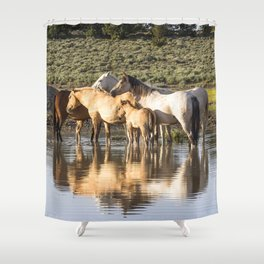 Reflection of a Mustang Family Shower Curtain