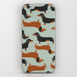 Dachshund, Taksa, Teckel, Weenie dog iPhone Skin