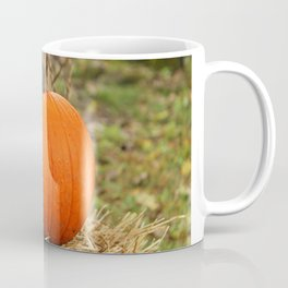 Pumpkin and the leaf Coffee Mug